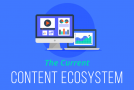 What We Learned from 300 Content Marketers