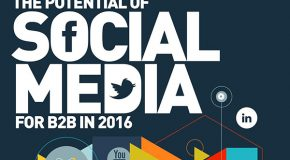 Interesting Infographics: The Potential of Social Media for B2B